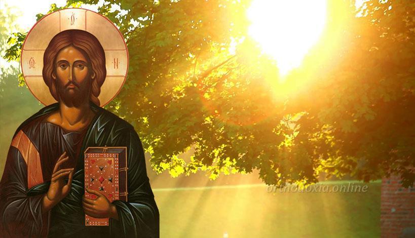 «Γέροντα, από πού θα γνωρίσω ότι έχω προκόψει στην πνευματική ζωή;»